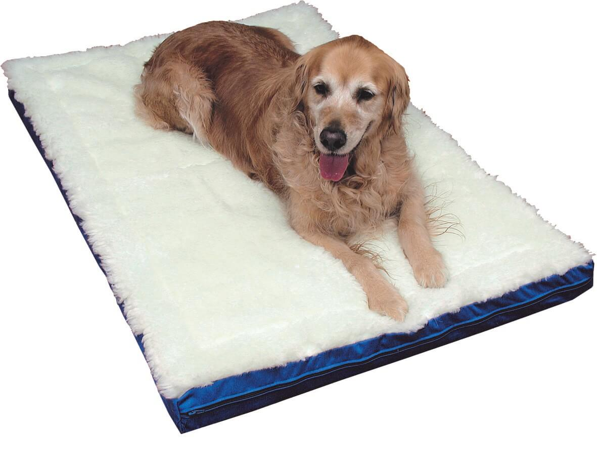 Magnetic Pet Bed Natural Therapy Pain Relief LGE-XL